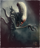 Alien Xenomorph by JakkeV