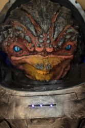 Pure Krogan by Manjou