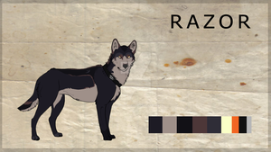 Razor - Reference Sheet /REVAMP/ by CappuccinoDai