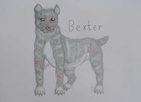 AT Bexter by oOFrosteehOo