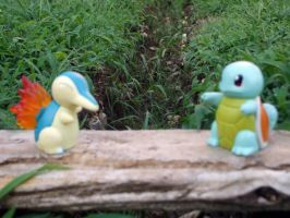 Cyndaquil annnd Squirtle by Bloodthirstwolf