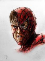 Spider-Man '02 overpaint by zclark
