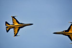 Singapore Airshow 2014 by TomFawls