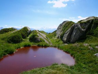 Red Pond by little-stock