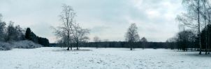 Snowscape Stock 53 by Sed-rah-Stock