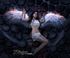 Even Angels Fall by TL-Designz