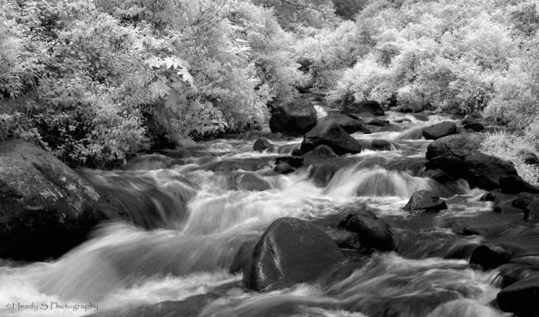 .: flow :. by silentview