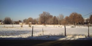 Horse Pasture by flamingpig