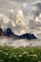 Premade Background 206 by FairieGoodMother