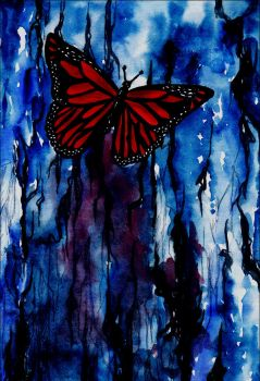Butterfly by Rutarisa