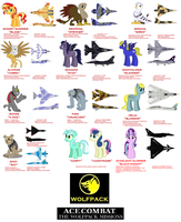 Ace Combat: The Wolfpack Missions Character Sheet by lonewolf3878