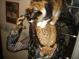 Cat vs Predator by Laurenthalas