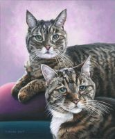 Double Cat Portrait by NewAgeTraveller