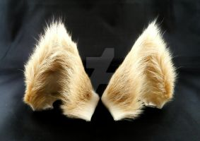 Blonde Wolf Ears Inumimi by StorytellerZero