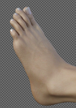 A study of toes by Doing-it-in-3d