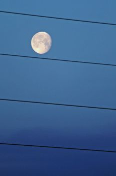 Blue Sky, Black Lines, Moon by PenguinOfRohan