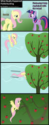 What Really Happened: Flutterbucking by Sintakhra