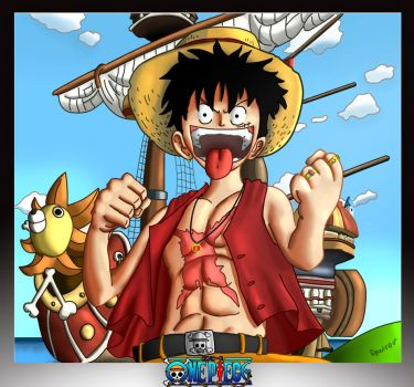 Captain M.D.Luffy by IRCSS