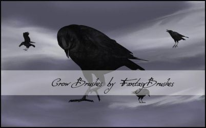 Crow Brushes by FantasyBrushes