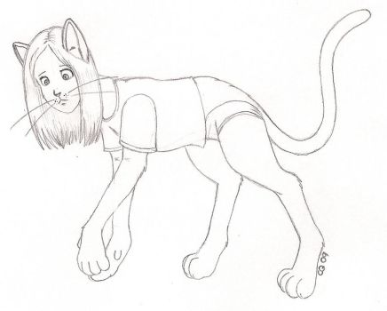 Cat TF sketch by cqmorrell