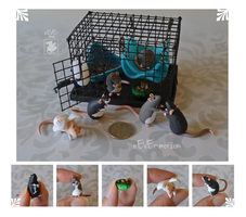 Tiny Cage and Several Dime Rats~ Teresa Commission by nEVEr-mor