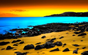 Newly dyed Fuerteventura by LeWelsch