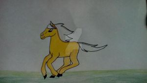 my drawing of thowra from the sliver brumby by TaraDragonheart