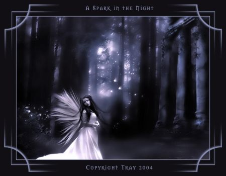 ..A Spark in the Night.. by spiritsighs