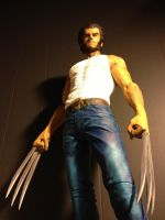 Narin Wolverine Finished paint job by tenzony