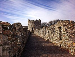 Conwy Wall by friartuck40