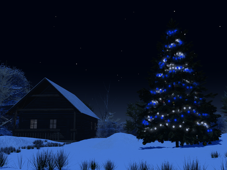 Christmas Tree at Night by Island-Dog