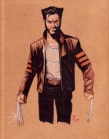 X-Men Origins: Wolverine by klavious5
