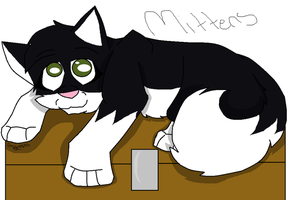 Mittens by amywolf45
