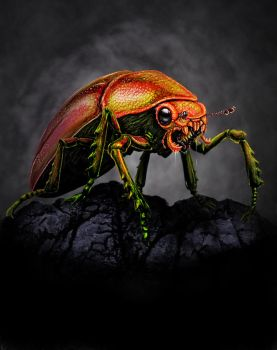 Beetle by Grumbleputty