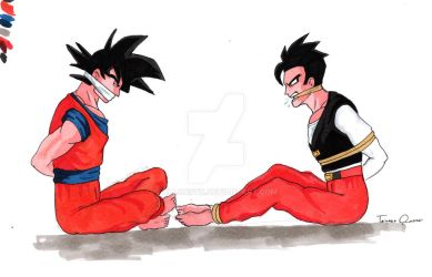 Request 2.0: Goku and Gohan tied up by allonsyx