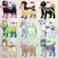 Canine adoptables CLOSED by ZjeroXytz