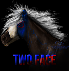 Two Face by The-Lumos