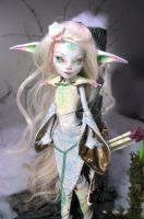 Akimbra TrueShot custom Monster high by NickiiRose