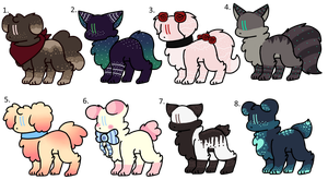 Auction dog adopts :OPEN: 5 point SB by SoulBirdAdopts