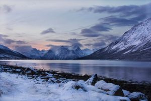 Winters Day by momary