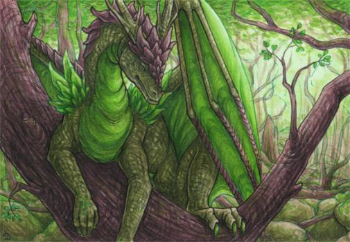 ACEO for Vashley by Dragarta