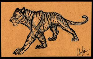Tyger, Tyger by Clairictures