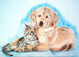 retriever with cat by bubumo