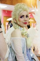 The cold never bothered me anyway by Seliverstova