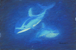 Duo Dolphins of the Depths by Crysenley