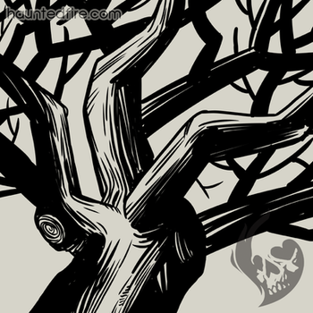 Old Spooky Tree  by cyclonaut