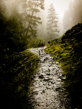 A pathway to enormous rain by madyb