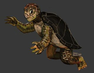 Mermay TURTLE by Inprismed