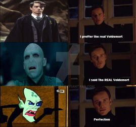 MoldyButt is best Voldemort by Negan1994