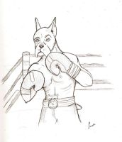Boxer sketch by FawnsWonderland